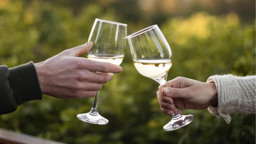 Deltagare på vår vinresa smakar på några av de finaste vinerna i Sydafrika på vingårdar i Stellenbosch vindistrikt.